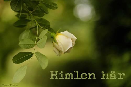 CA4_20150622_himlenhar